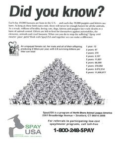 Spay and neuter!