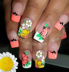 French Nail Art, French Nail Designs, Simple Nail Art Designs, Toe Nail Designs, Wow Nails, Pretty Nails, Spring Nails, Summer Nails, Nails Ideias