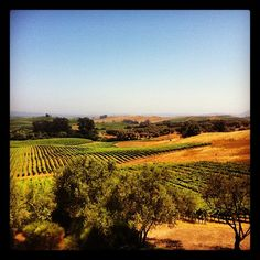 Artesa Vineyards & Winery - photo by Customer nforget via Instagram.