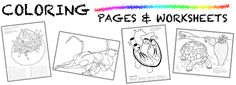 Ask a Biologist: Coloring Pages and Worksheets for Biology at every level #homeschool @TheHomeScholar