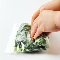 高い野菜は賢く冷凍しよう! 料理研究家が教える野菜別・冷凍テク 画像(3/7) 【写真を見る】保存袋に入れるときは空気をしっかり押し出す!
