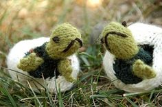 knitted turtles | knit turtles in egg cases sooo cute! The turtles come fully out of the ...