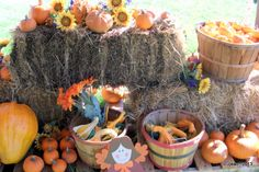 Pumpkin Patch held at the First United Methodist Church