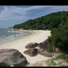 Daniela Beach, Florianapolis Brazil-A year from now, I could be lounging on this beach <3
