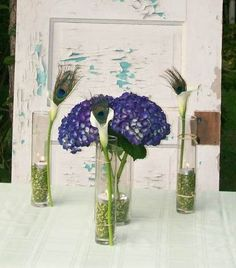 Peacock feathers table