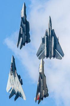 F-14 Tomcat's