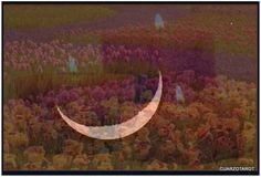 La Luna creciente 12 DE JUNIO DOMINGO 10.10H.   https://www.cuarzotarot.es/la-luna/la-luna-creciente  #FelizMartes