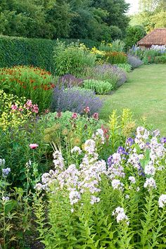 English garden Border Isobel Bilgen