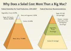 Why Does a Salad Cost More Than a Big Mac - food subsidies #government