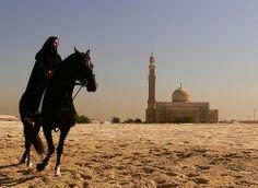 black horse on beach ...while shooting an ad - Dubai