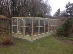 A mesh roof walk in Chicken run around a Thicket chicken coop to improve security and increase the space for the chickens