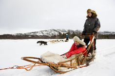 Dogs sledding in Finnmark, Northern Norway. www.nordnorge.com