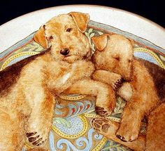 Resting Airedales Curled up in a Bowl by Nan Hamilton
