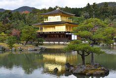 Temple du Pavillon d'or (Kinkaku-ji) (Kyoto) - TripAdvisor Thing 1, Photography Tours, Win A Trip, Kyoto Japan, Day Tours, Japan Travel, Trip Advisor, Places To Go, Photos