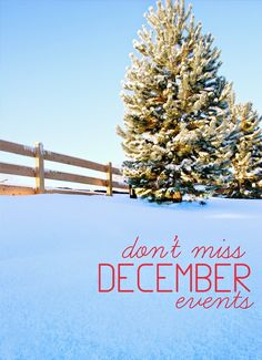 """Free Fun in Austin: 50 """"Don't Miss"""" December Events"""