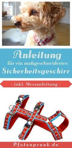 Kostenlose (ergänzende) Anleitung für ein Sicherheitsgeschirr! DIY erklärt von Pfotenprunk - Hundesachen Selbermachen!