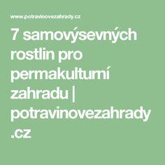 7 samovýsevných rostlin pro permakulturní zahradu | potravinovezahrady.cz