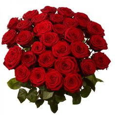 Send valentine's Day 2015 Roses, Flowers to Mysore- Buy online and send Valentines Day Gifts to him and her in India from mysoregiftsflowers.com at afordable prices.