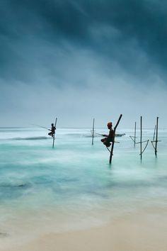 Stilt Fishing in Weligama, Sri Lanka. by Kimberley Coole
