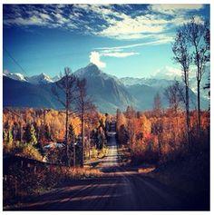 #Canada Road Trip