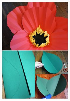 giant paper flowers tutorial. includes more than one type of flower