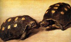 Albert Eckhout (circa Study of Two Brazilian Tortoises Circa 1640 Tempera and gouache on paper mounted on panel cm in). Width: 51 cm in). Albert Eckhout, Dutch Golden Age, 17th Century Art, Dutch Artists, Tortoises, Flora And Fauna, Old Master, Tempera, Rembrandt