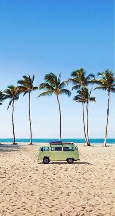 beach, palm trees, kombi van