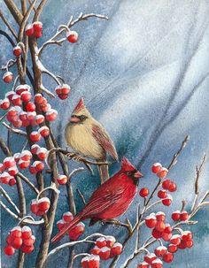 Watercolors for Sale | Chery Johnson Art  https://www.pinterest.com/francesdent2/red-cardinal-bird/