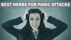 Herbs for Panic Attacks That Work via @herbhealth4u