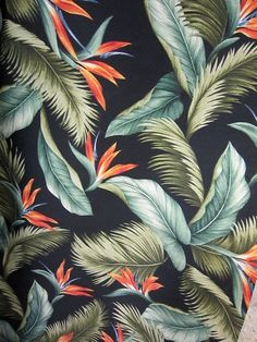 Trends 2018 Tropical Patterns