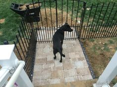 How To Install An Easy No Dig Fenced Dog Run In One Day