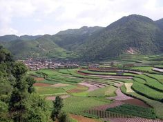 """""""Third Pandemic"""" is the name given to a major plague pandemic that began in the Yunnan province (pictured above) in China in 1855. This episode of bubonic plague spread to all inhabited continents, and ultimately killed more than 12 million people in India and China alone. According to the World Health Organization, the pandemic was considered active until 1959, when worldwide casualties dropped to 200 per year."""