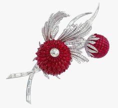 Ruby & Diamond Brooch by Van Cleef! #Brooch #Jewelry #Ruby