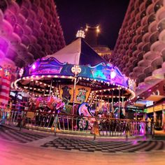 Allure of the Seas carousel Photo by fullcirclepost