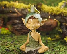 Image result for pixie garden
