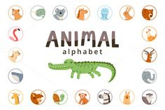 Animal alphabet by Stolenpencil on @creativemarket