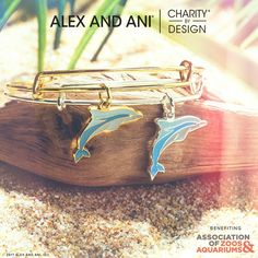Check out this NEW Charity By Design piece to support the Association of Zoos & Aquariums in Alex and Ani's Summer 2017 Collection! #alexandani #charitybydesign #shopbarnes #shoplocal