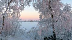 Etelään, länteen ja maan keskiosaan saattaa tulla jouluaattona uusi lumipyry. Pohjoisessa pakkanen paukkuu tällä viikolla paikoin 30 asteessa.