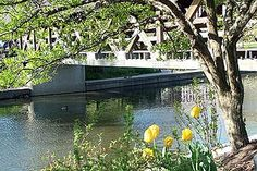 Naperville riverwalk - A beautiful place if you ever have the chance to visit