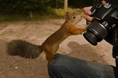 """ I am ready for my close-up sir""."