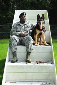 An Airman's best friend.U.S. Air Force Senior Airman Rayshawn Taylor, 4th Security Forces Squadron Military Working Dog (MWD) handler, sits with his dog Charlie, 4th SFS MWD, at Seymour Johnson Air Force Base, N.C., Aug. 21, 2013. Charlie, a 10-year-old German Shepherd and Purple Heart recipient, was retired from active duty after 10 years of service. (U.S. Air Force photo by Senior Airman Aubrey White)