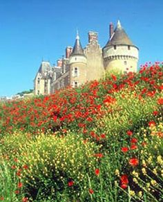 The beautiful Loire Valley in France