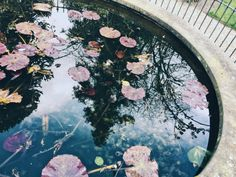 Photo by thatgirlfrombrave | VSCO | Wisbech