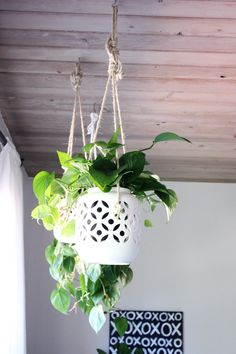 Awesome DIY porcelain hanging planters by  @elise blaha cripe!