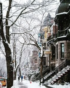 Dusting of snow on Le Plateau (Montreal, Quebec) Travel Around The World, Around The Worlds, Montreal Ville, Montreal Quebec, Winter Love, Winter Walk, Winter Magic, Winter Scenery, Snowy Day