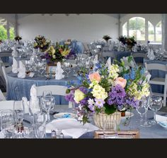 Lavender Blue - Reception