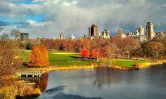 Great Lawn. By @gigi_nyc #fallfoliage #centralpark