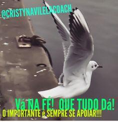 @cristynavilelacoach