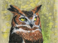 Red and the Peanut: Painting a Great Horned Owl...and experimenting with gouache...