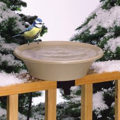 Heated Bird Bath, for our mountain home @Makayla Oei I'm going to need one ;)